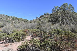 82 N Nellie Drive, Payson, AZ 85541