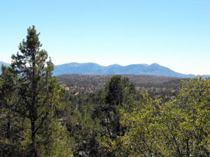 802 N Oak Point, Payson, AZ 85541
