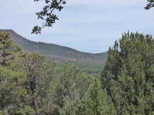 Lot 11 Drumecho Circle, Pine, AZ 85544