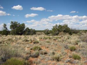 Lot 279 Chevelon Canyon Ranch, Overgaard, AZ 85933