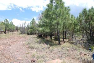 Lot 39 Antelope Trail, Payson, AZ 85541