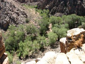 Sec 11 T16N,R16E: Tract 73, Winslow, AZ 86047