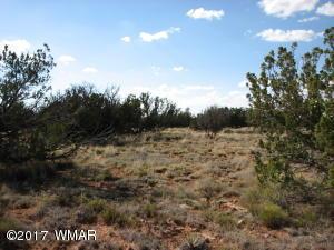 6017 Wide Sky Road, Overgaard, AZ 85933