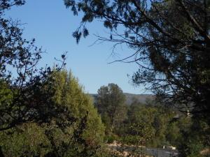1015 N Scenic Drive, Payson, AZ 85541