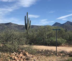 263 N Coyote Trail Road, Tonto Basin, AZ 85553