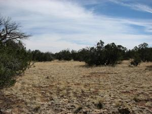 Lot 362 Chevelon Canyon Ranch #3, Overgaard, AZ 85933