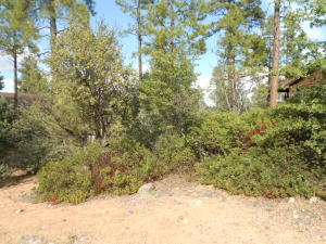 903 N Autumn Sage Court, Payson, AZ 85541