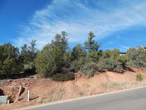 300 S Brassie Drive, Payson, AZ 85541