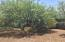 119 S Forest Road, Tonto Basin, AZ 85553