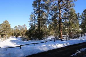 3353 Pine Cone Drive, Overgaard, AZ 85933