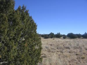 Lot 45 Chevelon Retreat #1, Heber, AZ 85928