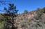 Lot 38 Dripping Springs Drive, Pine, AZ 85544