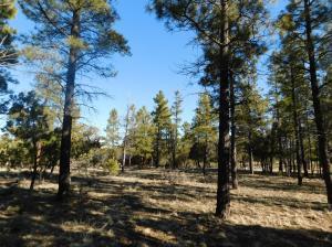 2813 Hidden Creek Circle, Happy Jack, AZ 86024