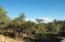 2808 E Coyote Mint Circle, Payson, AZ 85541