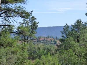 39 Saddleback Trail, Star Valley, AZ 85541