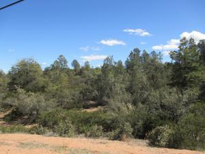 2003B E Highway 260, Payson, AZ 85541