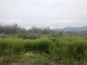 004J N FR 1396 Road, Tonto Basin, AZ 85553