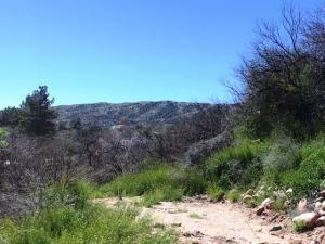 554 S Tonto Creek Drive, Payson, AZ 85541