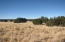 5054 Duck Lake Road, Heber, AZ 85928