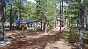 1238 Merzville Road, Forest Lakes, AZ 85931