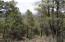 1412 E Tranquility Point, Payson, AZ 85541