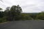 Lot 12 Drumecho Circle, Pine, AZ 85544