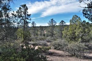 204 N Fawn Drive, Payson, AZ 85541