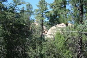 1002 S Monument Valley Drive, Payson, AZ 85541