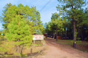 Ponderosa Cabin Property Entry