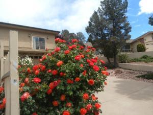 201 N TRAILWOOD Road, Payson, AZ 85541