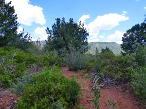 4287 N Valley View Drive, Pine, AZ 85544