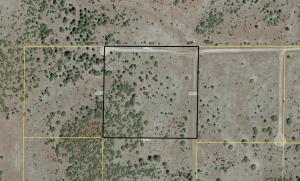 Lot 3 Red Cabin Ranch, Vernon, AZ 85940