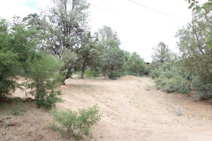 Lot 41, BV Estates Unit Four, Payson, AZ 85541