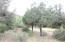 Lot 41, BV Estates Unit Four, Payson, AZ 85541