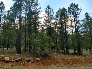 4318 Apache Drive, Happy Jack, AZ 86024
