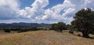 290 N Navajo Trail, Young, AZ 85554