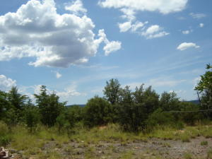 10A N Myrtle Point Trail, Christopher Creek, AZ 85541