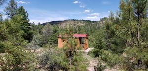 470 E Forest Service Rd 512, Young, AZ 85554