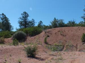 2003 E Rainbow Trail, Payson, AZ 85541