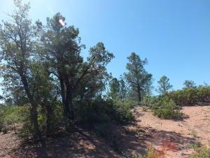 2005 E Rainbow Trail, Payson, AZ 85541