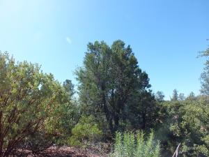 2007 E Rainbow Trail, Payson, AZ 85541