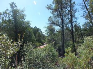 2015 E Rainbow Trail, Payson, AZ 85541