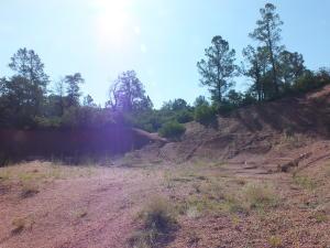 207 S Thunder Mountain, Payson, AZ 85541