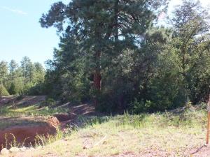 203 S Thunder Mountain, Payson, AZ 85541