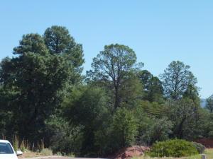 220 S Thunder Mountain, Payson, AZ 85541