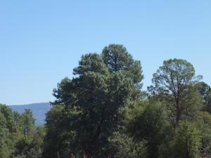 218 S Thunder Mountain, Payson, AZ 85541