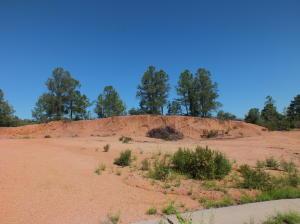2022 E Rainbow Trail, Payson, AZ 85541
