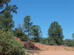 2020 E Rainbow Trail, Payson, AZ 85541