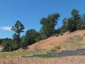 212 S Thunder Mountain, Payson, AZ 85541