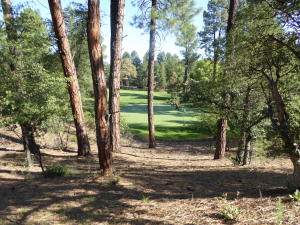 408 N Evening Primrose Circle, Payson, AZ 85541